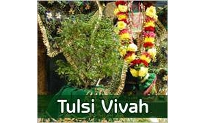 Tulsi Saligrama Vivah : 24th November 2012