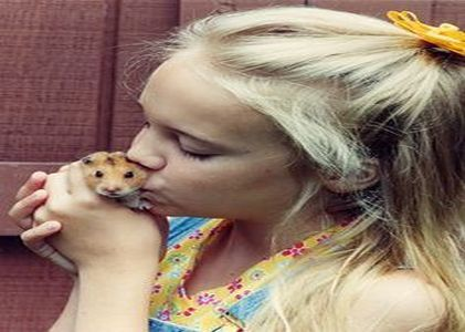 Cancer and Hamsters share a delicate bond!
