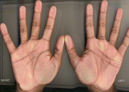 Significance of lines in your palm