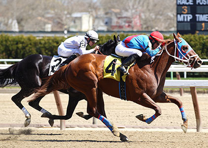 Applied numerology in Horse Racing