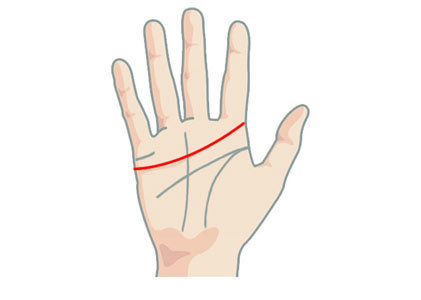 A long love line in Palmistry