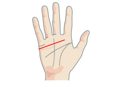 Straight heart line in Palmistry