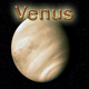 Venus In 1st House