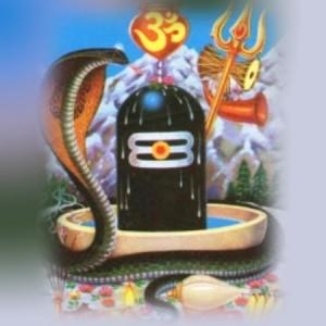 Nag Panchami - A day of snake worship