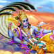 Shattila Ekadashi Vrat: The Day That Reminds Us Of The Importance Of Donating Food