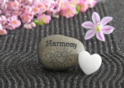Bring Harmony in Life:
