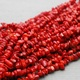 Red Coral Stone Benefits