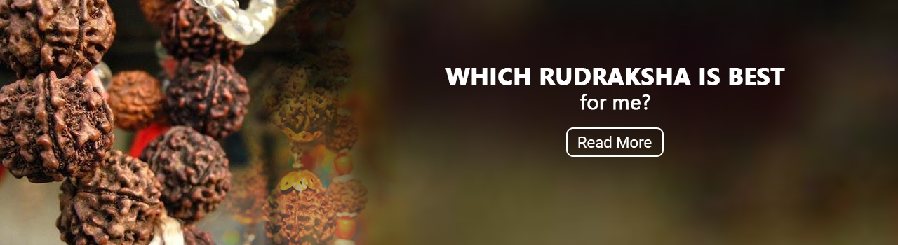 Everything you need to know about Rudraksha